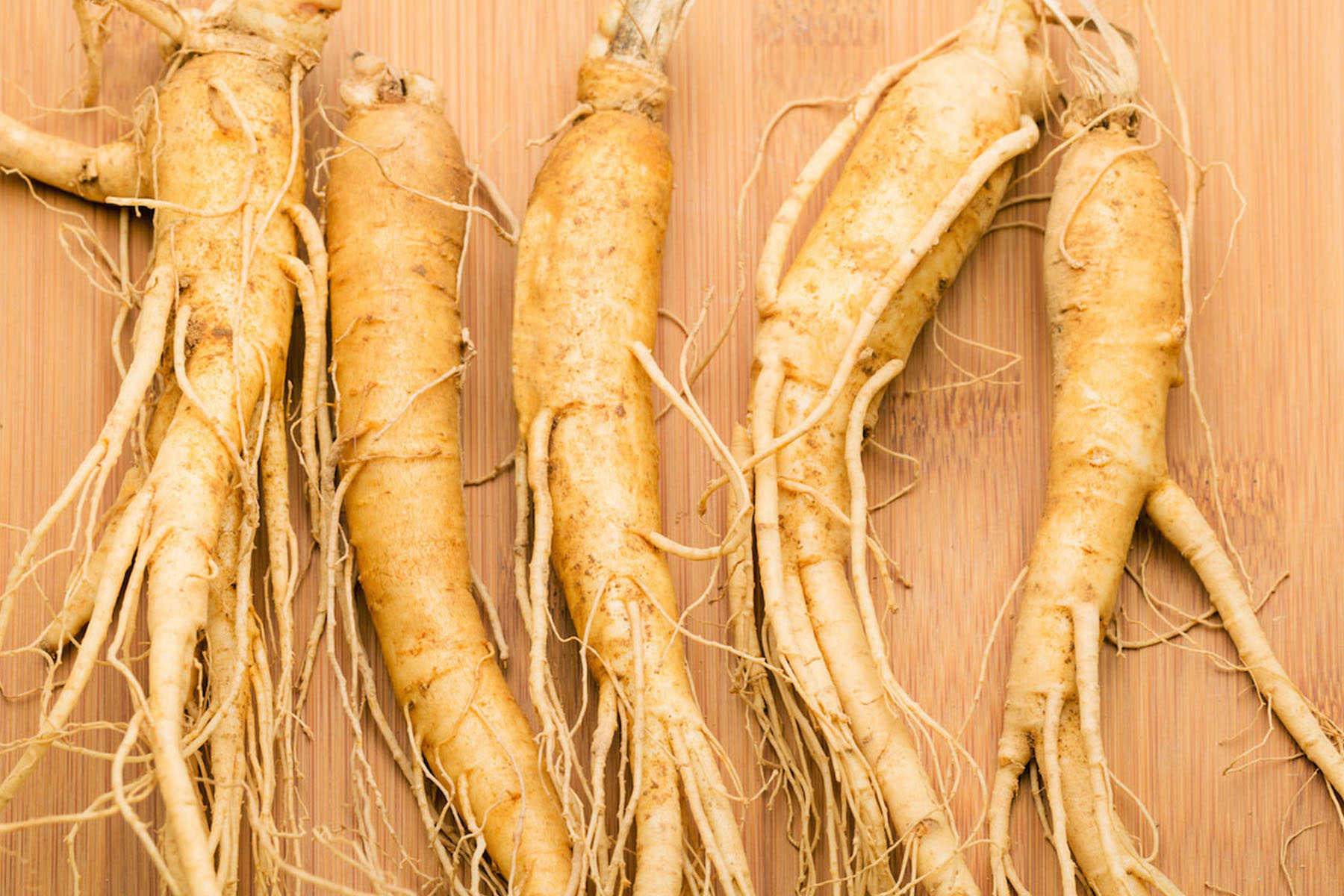 Rainey Ginseng Since 1947 | Buy high quality north american ...